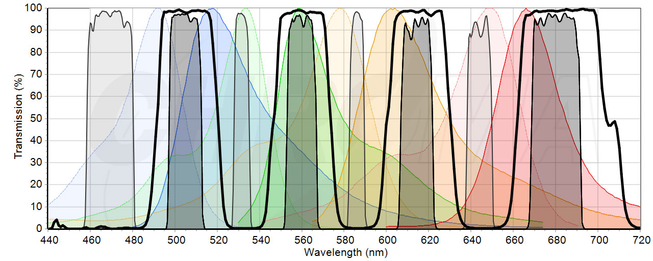 One single, four-band filter set to detect nucleotides conjugated to FAM, HEX, ROX or C5