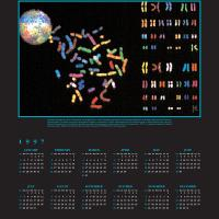 1997 Calendar