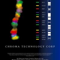 1998 - CHROMOSOMAL RAINBOWS